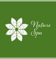 nature spa leaf logo design template white color vector image