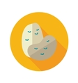 Potato flat icon with long shadow vector image