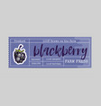 blackberry bio sticker and eco products vector image vector image