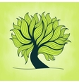 Green tree with branches and leaves vector image vector image