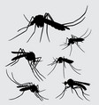 mosquito insect animal silhouette vector image