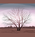 tree landscape oak without vector image vector image