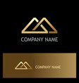 triangle connect shape gold company logo vector image vector image