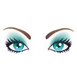 blue eyes with makeup vector image