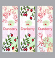 herbal tea collection cranberry banner set vector image
