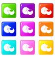 hazelnuts icons 9 set vector image