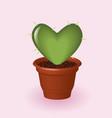 heart cactus vector image vector image