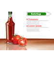 ketchup bottle realistic mock up product vector image