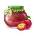 plum jam in the glass jar vector image