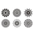 set of floral patterns black color vector image vector image