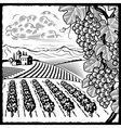 Vineyard landscape black and white vector image vector image