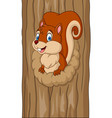 cartoon squirrel in the tree hole vector image vector image