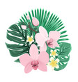 exotic tropical bouquet orchid plumeria leaves vector image vector image