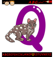 letter q for quoll cartoon vector image vector image
