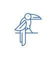 parrot line icon concept parrot flat vector image