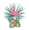 summer flamingo banner vector image