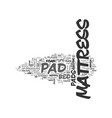 why a mattress pad matters text word cloud concept vector image vector image