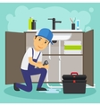 Plumber and plumbing service vector image