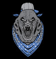 angry gorrila head with chains vector image