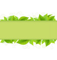 Green Leaves vector image