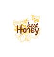 honey sketches logo bee hive honey jar barrel vector image vector image