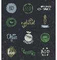 Ink logotypes set Badges labelsleavesribbons vector image vector image