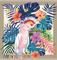 parrot abstract color tropical pattern frame vector image vector image