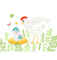 rabbit and chicken in branches vector image