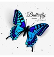 Realistic butterfly with shadow and noise vector image vector image