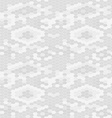 Snake skin texture Seamless pattern gray vector image