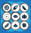 vegetable icons set with melon maize lychees and vector image vector image
