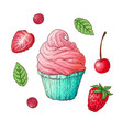 a set of strawberry cherry cupcake hand drawing vector image vector image