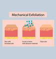 mechanical exfoliation or peeling vector image vector image