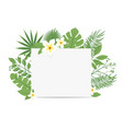 tropical flyer with palm leaves and exotic flowers vector image vector image