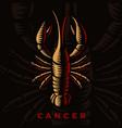 a cancer zodiac sign vector image
