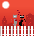 Cats on fence in love vector image vector image