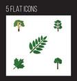 flat icon ecology set of oaken acacia leaf wood vector image vector image