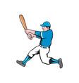 Baseball Player Batter Swinging Bat Isolated vector image vector image