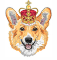 dog Pembroke Welsh corgi breed in gold crown vector image vector image