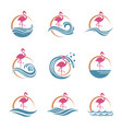 flamingo emblems set vector image vector image