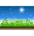 Grass Border On Clear Sky Background vector image vector image