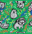 seamless pattern with cute koalas in the vector image vector image