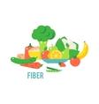 Vegetables food cellulose set vector image