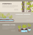collection of web banners with plants growing in vector image vector image