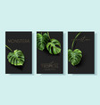monstera banners with green tropical leaves vector image vector image