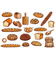 pastry icons bread baguete bun and bagel vector image vector image
