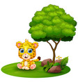 cartoon cheetah sitting under a tree on a white ba vector image vector image