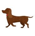 cartoon dog cute purebred vector image