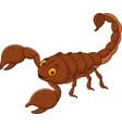 cartoon happy scorpion vector image