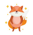 cute fox with beautiful tail animal with stars vector image vector image
